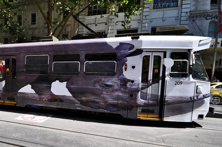 The Andy Social Podcast - Luke Cornish - Rhino on Melbourne Tram